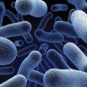 Probiotics Treatment for Crohn's Disease